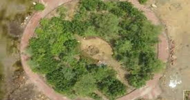 UN-GCNP promotes Urban Forests in Industrial Estates