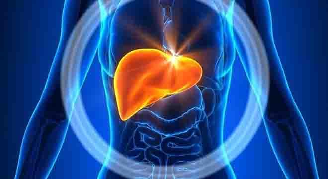 جگر کے امراض کی ابتدائی علامات کیا ہیں؟ ماہرین صحت نے آگاہ کر دیا